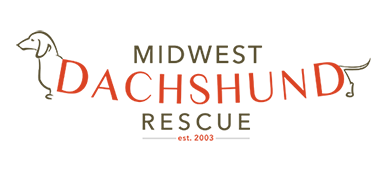 Midwest Dachshund Rescue